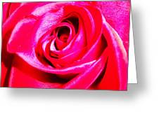 Timeless Red Rose Greeting Card