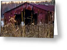 Tin Roof Rusted Greeting Card by Bill Cannon