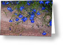 Tiny Blue Flowers Greeting Card