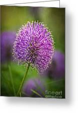 Tiny Purple Wildflower II Greeting Card
