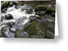 Tiny Waterfalls Greeting Card