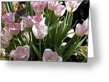 Tip Toe Through The Tulips Greeting Card