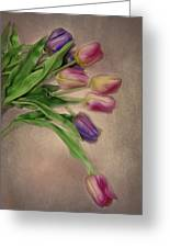 Tip Toe Thru The Tulips Greeting Card by Mary Timman