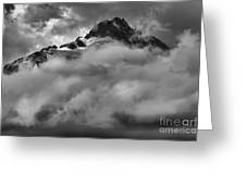 Tips Of The Tantalus Greeting Card