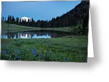 Tipsoo Morning Meadows Greeting Card
