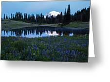 Tipsoo Reflection Tranquility Greeting Card