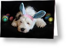 Tired Little Bunny Greeting Card