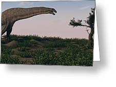 Titanosaurus Standing Grazing In Swamp Greeting Card