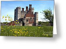 Titchfield Abbey Buttercups Greeting Card
