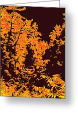 Titian Woodland Greeting Card