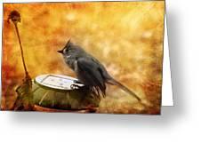 Titmouse In The Rain Greeting Card