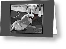 To Know A Pit Is To Love Greeting Card
