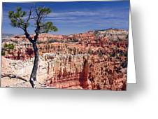 To The Edge Greeting Card