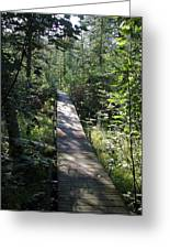 To The Trout Stream Greeting Card