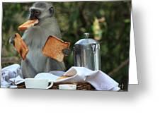 Toast Monkey Greeting Card