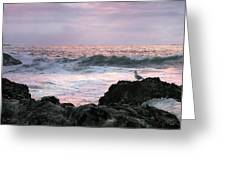 Tofino Sunset Greeting Card by Micki Findlay