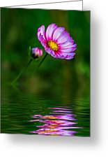 Together...always Reflection Greeting Card