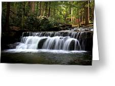 Tolliver Falls Maryland Greeting Card