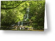 Tom Branch Falls Greeting Card