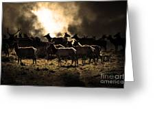 Tomales Bay Harem Under The Midnight Moon - 7d21241 - Sepia Greeting Card