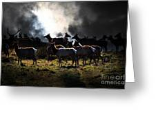 Tomales Bay Harem Under The Midnight Moon - 7d21241 Greeting Card by Wingsdomain Art and Photography