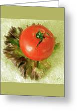 Tomato And Lettuce Greeting Card