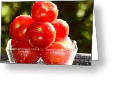 Tomatoes 2 Greeting Card