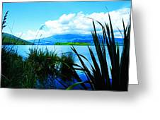 Tongariro National Park Oil On Canvas Greeting Card