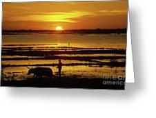 Tonle Sap Sunrise 01 Greeting Card