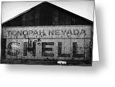 Tonopah Shell Greeting Card by Gail Lawnicki