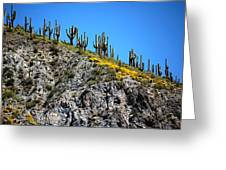 Tonto Ridge 16112 2 Greeting Card