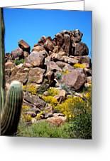 Tonto Saguaro Rocks 10189 Greeting Card