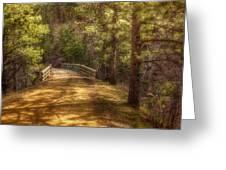 Top Of The Bridge Greeting Card