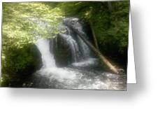 Top Of The Falls Greeting Card