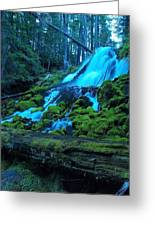 Top Part Of Clearwater Falls Greeting Card