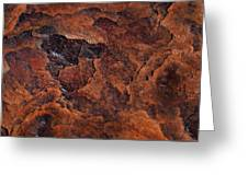 Topography Of Rust Greeting Card