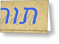 Torah Greeting Card