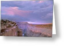 Toroweap Overlook Grand Canyon Nparizona Greeting Card by Tim Fitzharris