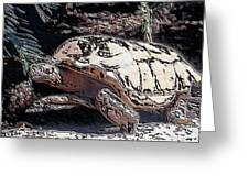 Tortoise Of Stone Greeting Card