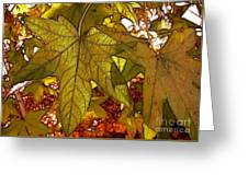 Touch Of Fall Greeting Card