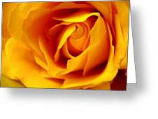 Touch Of Hope Greeting Card