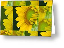 Touch Of Yellow  Greeting Card