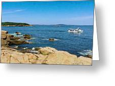 Touring The Rocky Shore Greeting Card