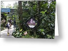 Tourist Doing Photography And Viewing Plants In A Garden Greeting Card