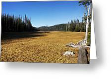 Towards Hand Lake And Mt Jefferson Greeting Card