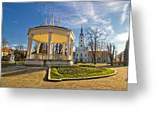 Town Of Bjelovar Central Park Greeting Card