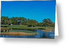Tpc Sawgrass Island Green Greeting Card