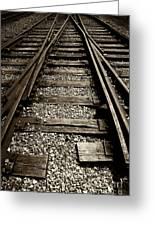 Tracks Into Tracks - 2 Greeting Card