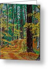 Trail At Wason Pond Greeting Card