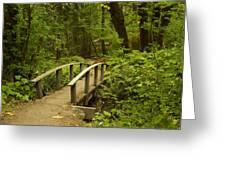 Trail Bridge Toketee 1 Greeting Card